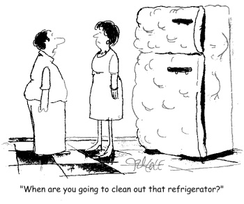 cleanfridge3