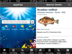 applifish