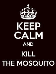 kill-mosquito